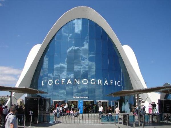 Oceanografico de valencia opiniones y criticas de for Oceanografico valencia